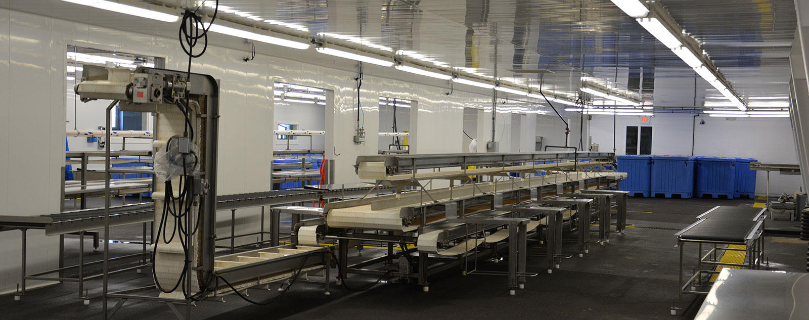 State-of-the-Art Processing Lines